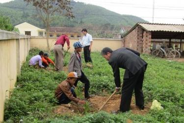VQG Phong Nha – Kẻ Bàng: Trồng cây xanh khuôn viên trường học thuộc các xã vùng đệm